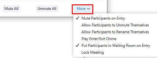 More meeting settings in the Zoom interface