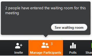 See waiting room in Zoom
